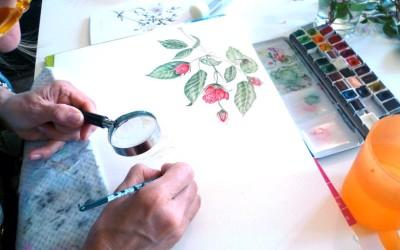 Dipingere le rose
